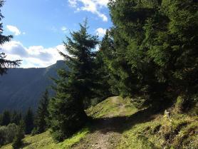 Jedna z turistických tras v Saalbachu