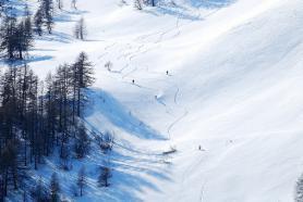 Pohled na freeridery na sněhu